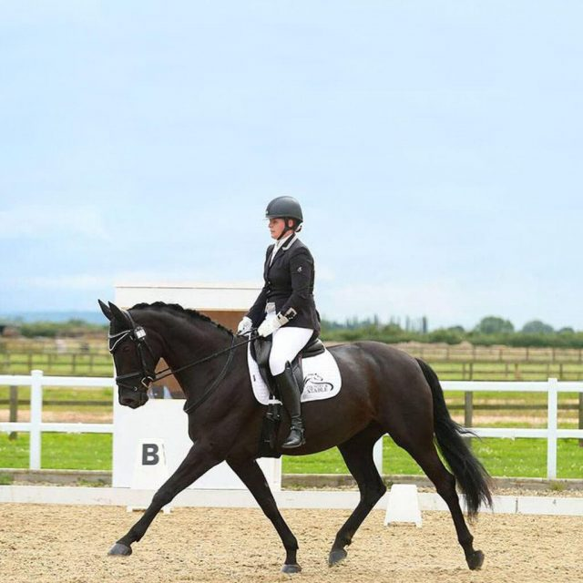Meet Amanda Shirtcliffe, Para Dressage Rider