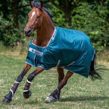 Bucas Atlantic Turnout Rug 50g in Atlantic Green
