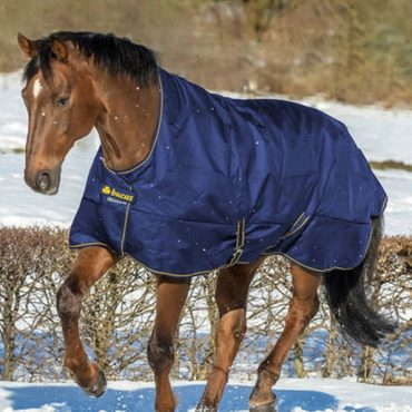 Bucas Irish Light 50g Turnout High Neck in Navy/Gold