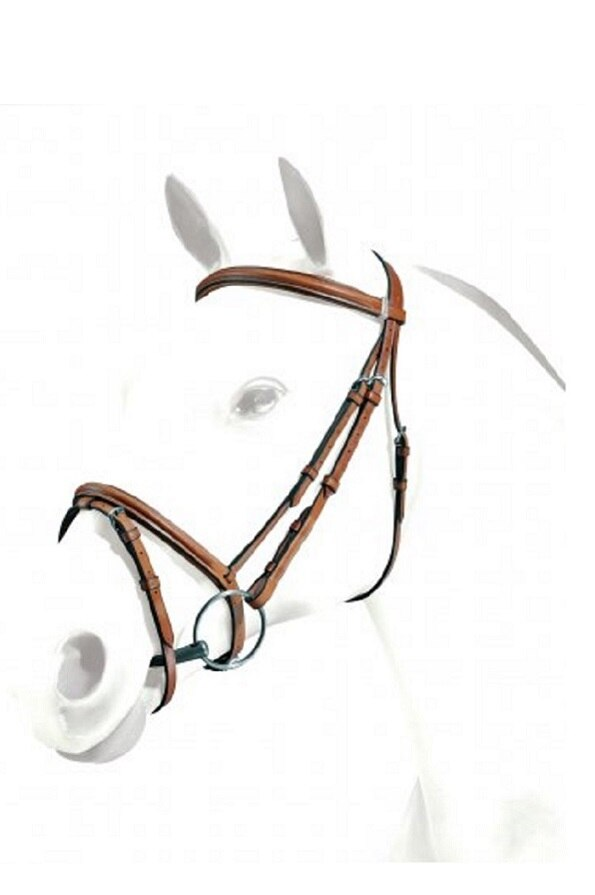 Equipe Emporio Flash Bridle in Brown