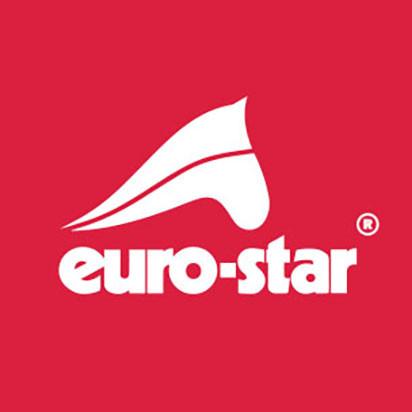 Euro Star logo