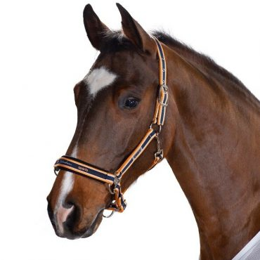 Eskadron Classic Striped Headcollar - Navy/White/Papaya