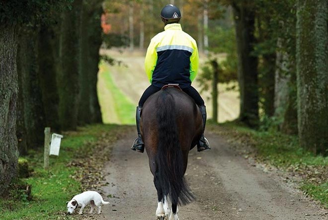 rinding horse with safety jacket