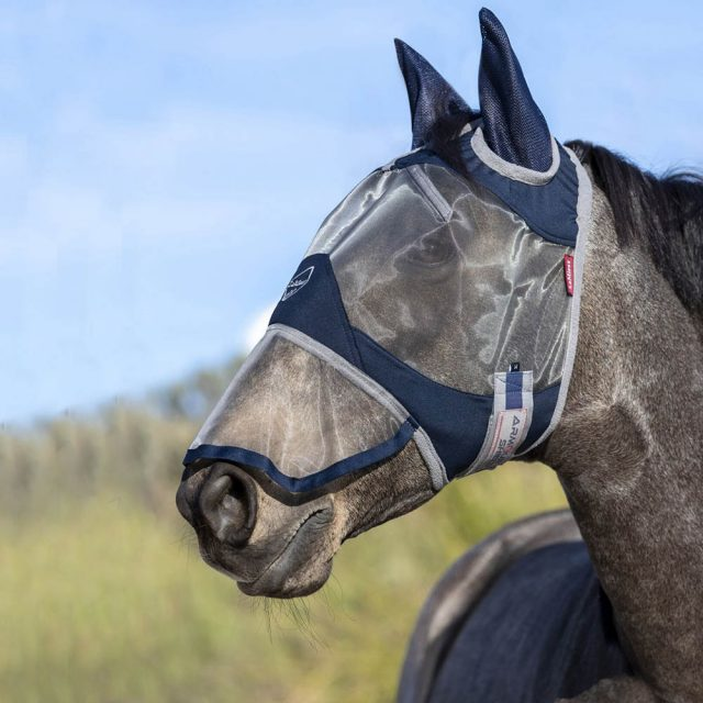 What does a fly mask do, and does my horse need one?