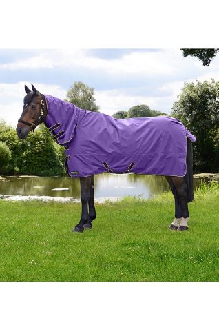 image of StormX Original 50g Combi Turnout Rug