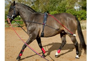image of John Whitaker TSR Training System