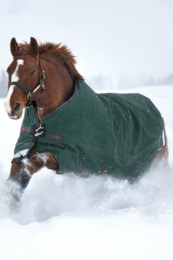 Horseware Rambo Original Turnout Rug with Leg Arches 100g - Green/Red