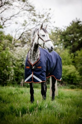 image of Horseware Rambo Original Turnout Rug with Leg Arches 100g