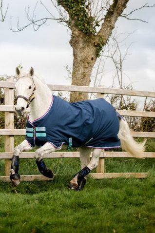 image of Horseware Amigo Hero 900D Pony Turnout Rug 200g