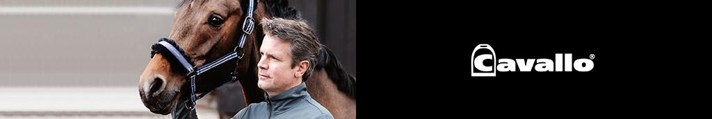 Cavallo category image