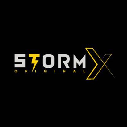 storm X logo